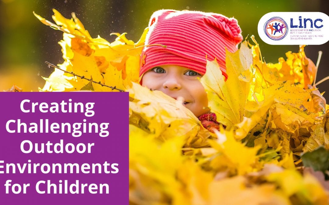 Creating Challenging Outdoor Environments for Children